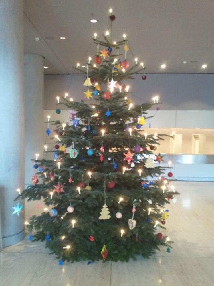 Tannenbaum erstrahlt in weihnachtlichem Glanz
