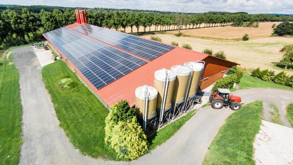 Beratung und Investitionshilfe für kleine und mittlere Betriebe der Landwirtschaft und des Gartenbaus