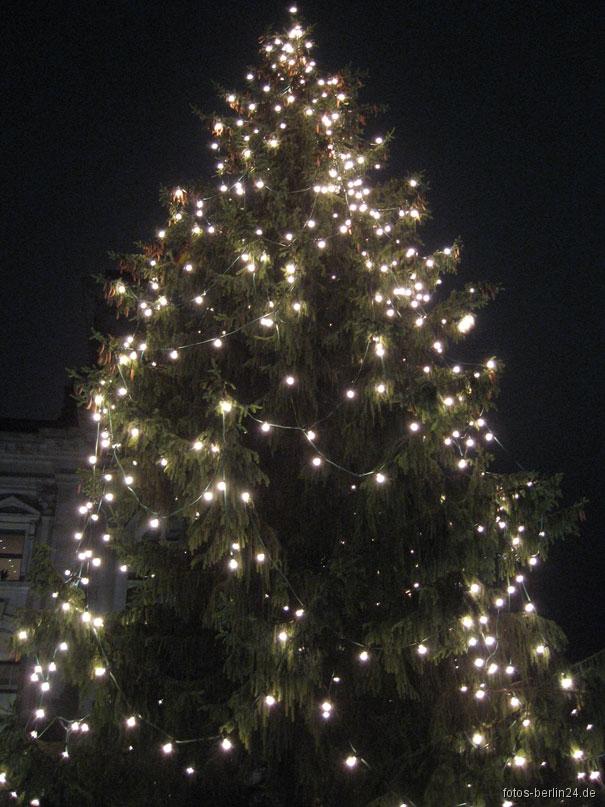 Weihnachtsbaum Berlin.Berlin Weihnachtsbaum Andreas Mattfeldt